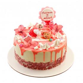 Торт на 5 месяцев