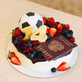 Торт с паспортом на 14 лет