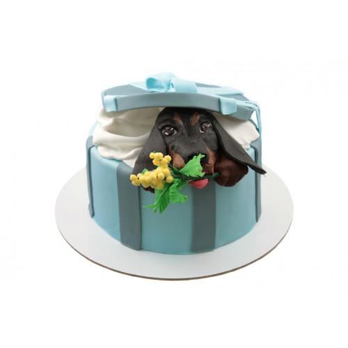 Торт с щенком и цветами
