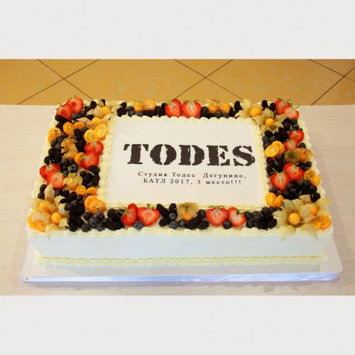 Торт для студии TODES