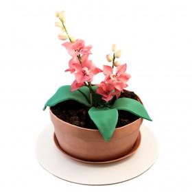 Торт в форме цветка Орхидеи