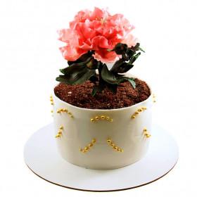 Торт в форме цветка Пиона